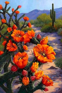 Oil Painting of flowers in Arizona by Artist Lucy Dickens Desert Flowers, Desert Plants, Exotic Flowers, Beautiful Flowers, Watercolor Landscape, Landscape Art, Landscape Paintings, Landscapes, Cactus Painting