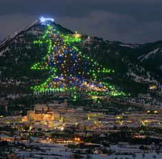 "The Mount Ingino Christmas ""Tree"" in Italy actually consists of many little trees. Every year, the slopes of Mount Ingino are outfitted with more than 3,000 lights and at night, they glow in the shape of one big (2,130 ft high and 350 meters wide, to be exact) tree."