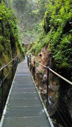 Situado en el Valle del Vallespir, en el pueblo de Arles-sur-tech, se encuentra estas gorges.      Podéis ver este cañón, de grandes rocas, ... Railroad Tracks, Bridge, Camping, Earth, Nature, Trips, Traveling, Facebook, Walks