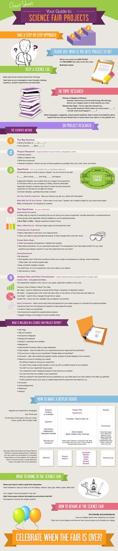 Science Fair Projects Infographic Cheat Sheet