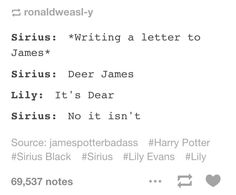 sure this happened at some point James and Sirius Harry Potter Harry Potter Jokes, Harry Potter Fandom, Harry Potter World, James Potter, Drarry, No Muggles, Yer A Wizard Harry, Fandoms, Harry Potter Universal