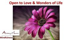 Open to love and wonders in life #meditation