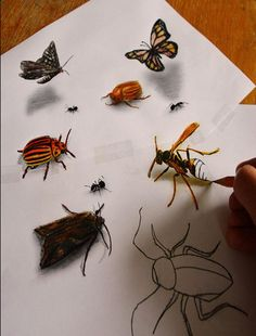 Dutch artist Ramon Bruin, aka JJK Airbrush, continues to create optical illusion drawings that make animals and objects seem as though they're popping off 3d Pencil Drawings, Realistic Drawings, Pencil Art, Drawing Sketches, Illusion Drawings, Pitt Artist Pens, 3d Optical Illusions, Photo Images, Drawing Skills