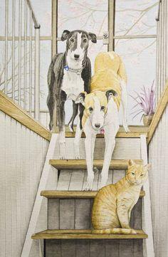 Portfolio - Kelly Archer Wildlife & Pet Portraits  #greyhound #cat #painting #watercolor #watercolour #stilllife #portraits #petportraits