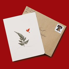 """Printed on recycled paper, the sweetly simple illustration of a cardinal approaching an evergreen features a real fern leaf affixed to every card! Set includes six 4""""x5½"""" note cards (which open to read """"Merry Christmas"""") and kraft paper envelopes."""
