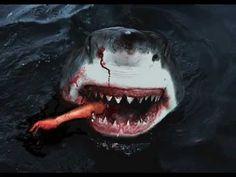 Crocodile attacks shark | http://i.ytimg.com/vi/FvQQZs0S4WY/0.jpg