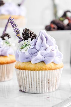 Blackberry Cupcakes, Lavender Cupcakes, Vanilla Cupcakes, Bite Size Desserts, No Bake Desserts, Cupcake Photography, Food Photography, Great Australian Bake Off, Culinary Lavender