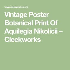Vintage Poster Botanical Print Of Aquilegia Nikolicii – Cleekworks