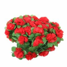 cut carnations and use for guys to pin on their shirt for roaring twenties party.