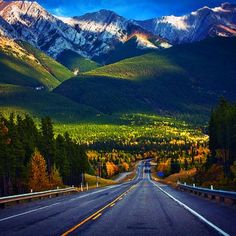 Taking the scenic route to and around Alberta Canada one will see Canadian wildlife such as bighorn sheep and wolves. So beautiful! Rocky Mountains, British Columbia, The Places Youll Go, Places To See, Beautiful World, Beautiful Places, Amazing Places, Calgary, Vancouver