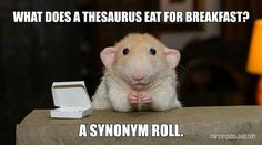 What did a thesaurus eat for breakfast? A synonym roll!