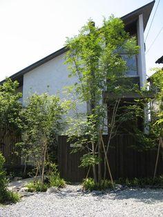4/11のカフェプロジェクトから3週間。 ひさしぶりにコアンを訪れると、新緑が盛り盛りでした!!   シンボルツリーのアオダモの葉もしっかり出揃い...