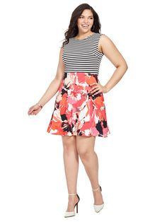 Dress in Mixed Print by Sandra Darren Available in sizes 10/12 and 14W-24W