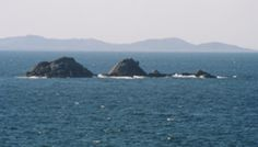 Julian Rocks - Byron Bay - an awesome dive spot! Grey nurse sharks, sea turtles, lion fish, sting rays...