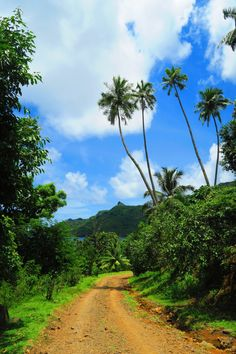 Driving to Hatiheu Village in Nuku Hiva Island
