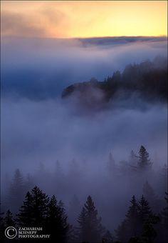 ✯ Ethereal Dawn