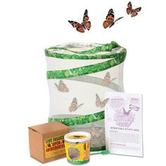 Buy a Live Butterfly Garden Kit from Mulberry Bush the online retailer of Traditional & Innovative Children's Toys, Gifts & Games Live Butterfly Garden, Butterfly Kit, Painted Lady Caterpillar, Butterfly Hatching, Ant Habitat, Mulberry Bush, Christmas Paper, Beautiful Butterflies, Little Gifts
