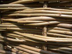 Willow panels