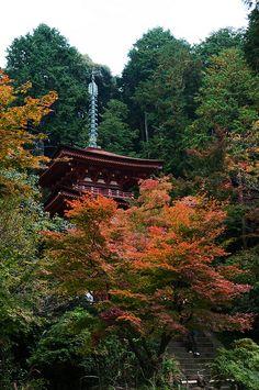 浄瑠璃寺三重塔 | 阪口 幸雄 | Flickr