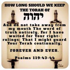 Bible Verses Quotes, Bible Scriptures, Sabbath Quotes, Lion Of Judah, Bible Knowledge, Bible Teachings, Bible Truth, Torah, Word Of God