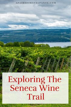 If you haven't done the Seneca wine trail in upstate New York yet, put it on your list as it is a lot of fun. This is a great experience around Seneca Lake in New York. New York Travel, Travel Usa, Wine Tasting Near Me, Wine Country Gift Baskets, Seneca Lake, Drinking Around The World, Road Trip Hacks, Wine And Spirits