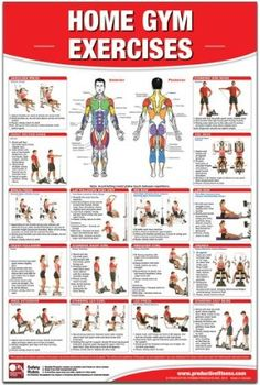Home Gym Exercises Laminated Workout Poster