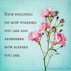 20 Inspiring Gratitude Quotes & Tiny Buddha's Gratitude Journal Giveaway Gratitude Quotes, Positive Quotes, Positive Affirmations For Anxiety, Positive Mindset, Calm Quotes, Me Quotes, Calming Quotes Stress, Quotes On Stress, Tiny Buddha