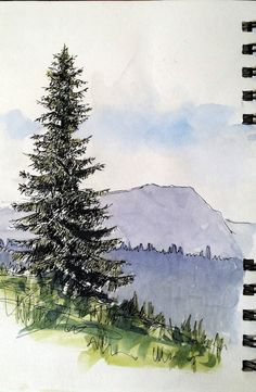 How to draw wintery conifers Watercolor Sunflower, Watercolor Trees, Watercolor Landscape, Watercolor And Ink, Watercolor Paintings, Pine Tree Painting, Pine Tree Art, River Painting, Canvas Painting Projects