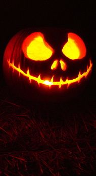☆ Pumpkin Carving Art ☆