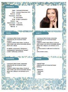 personal branding cv voorbeeld 13 verbazingwekkende afbeeldingen over Gratis CV sjablonen   Cv