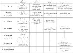 Babywise Schedule Sample Schedules Broken Down By Month Newborn 4 Months 6 And 9 Colette Diy Baby Sleep
