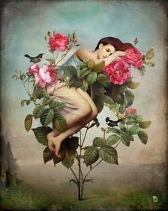 Poster | IN BLOOM von Christian Schloe