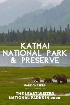 Katmai National Park & Preserve - one of the Top 10 Least Visited National Parks Alaska National Parks, National Park Passport, Glacier Bay National Park, Cascade National Park, Katmai National Park, Most Visited National Parks, North Cascades National Park, Kenai Fjords, Hiking Guide