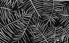 www.lucas2d.com #sketch #sketchbook #draw #drawing #ink #illustration #pattern #doodle #tropical #summer #dark #shadow #leaf #leaves #nature #natureza #folha #folhas #natural #artwork #beautiful #rapport #plant #plants #love #fun #graphic #design #desenho #art