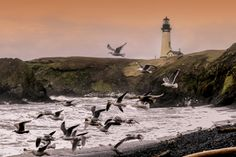 Yaquina Head on the Oregon coast.