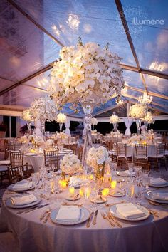 Soft and beautiful lighting for reception