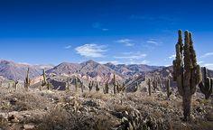 Vista desde El Pucará de Tilcara - Quebrada de Humahuaca - Jujuy - Argentina