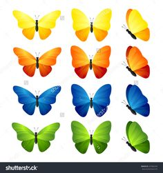 Butterfly Set. Vector Illustration Of Tropical Blue, Yellow, Orange And Green Butterflies. - 437082256 : Shutterstock