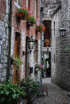 Pretty window boxes in a narrow alley in Belgium. Creating beauty in a small space.