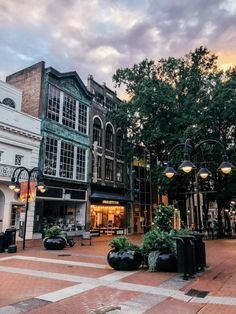 """Virginia is for wine lovers, y'all! Virginia has been on my list of """"go and see"""" places for quite some time as I was vaguely familiar with it's… Tree Surgeons, Home Of The Brave, Garden Maintenance, Land Of The Free, Take Me Home, In The Tree, Travel Couple, Travel Goals, Wine Country"""