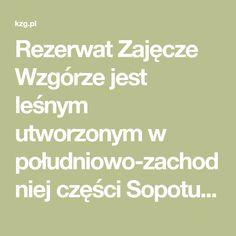 Rezerwat Zajęcze Wzgórze jest leśnym utworzonym w południowo-zachodniej części Sopotu. Jego głównym obiektem ochrony jest ekosystem kwaśnej buczyny niżowej.