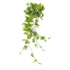 Hanging Pothos, 48'' Hanging Pots, Green Plants, Artificial Plants, Houseplants, Decorative Items, Greenery, Planter Pots, Decoration, Herbs