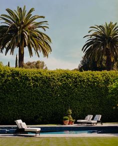 Wish I could be here {and I love hedges}