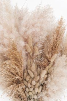 ELLE INTERIEUR - blog interior & lifestyle  #droogbloemen #driedflowers