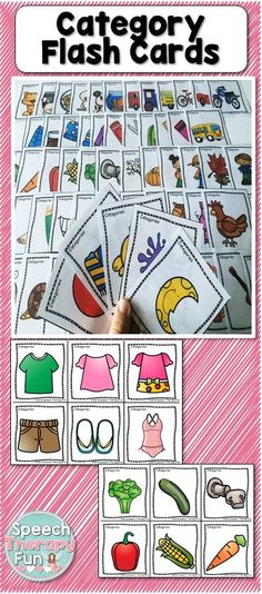 Category Flash Cards include 2 sets (with and without words) that address multiple categories!
