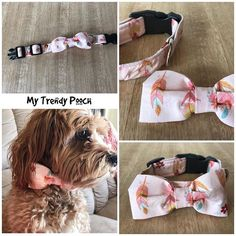 Available now from my Etsy store - handmade dog collar with matching bow tie #spoilyourdog #mytrendypooch #pets #etsy #handmadedogcollar #dogcollars #isellonetsy