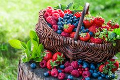 Foods That Protect Your Skin From the Sun