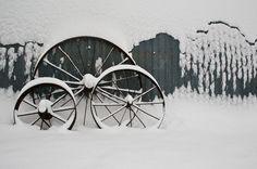 First Snow 2011 by Josh Green via flickr