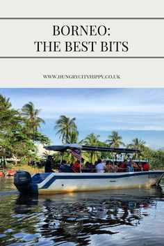 The best bits of Borneo: monkeys, street food and more!