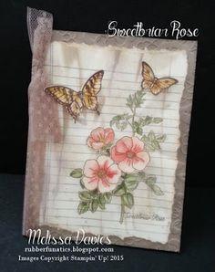 Stampin' Up! Sweetbriar Rose by Melissa Davies @rubberfunatics #rubberfunatics #stampinup